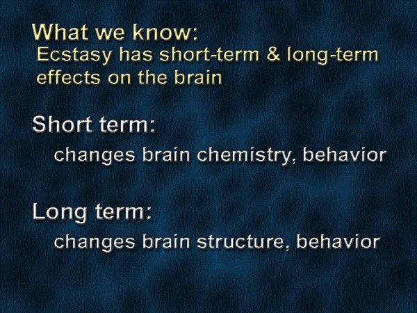 Что нам известно об экстази