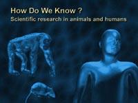 Откуда нам это известно?   Исследования животных  и человека